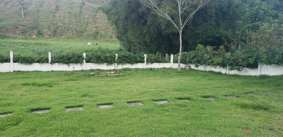 Cemitério de Animais Vida Pet, JF